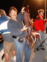 Highlight for album: 2010 Giant Humboldt Squid Vacation in California!!!